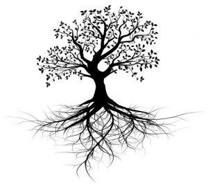Deep Roots Tree